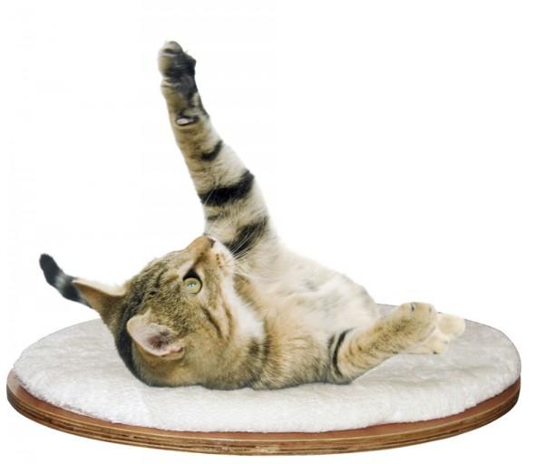 Kerbl Dolomit kaķa plaukts/gulta 1